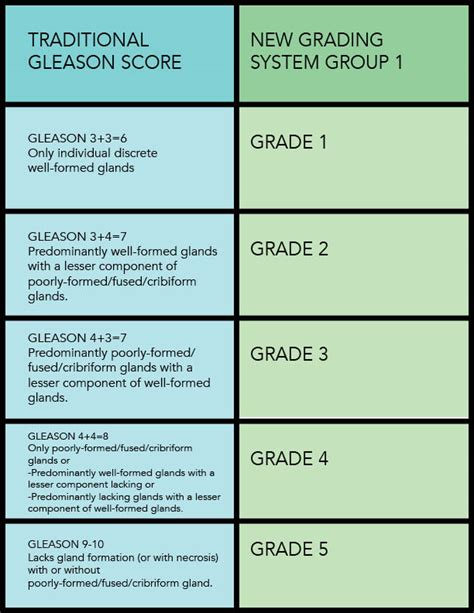 Prostate cancer gleasons grade 3 picture 10