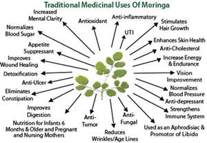 what is the herb that acts as an picture 17