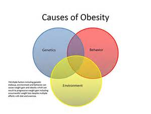 causes of weight loss picture 19