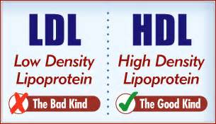what does it mean when cholesterol hdl and picture 7