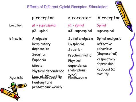 mu opiod receptor herbs picture 6