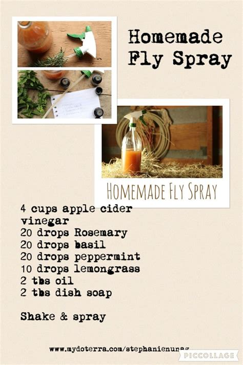 equine fly spray homemade picture 2