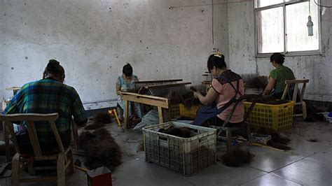 china hair manufactor factory picture 7