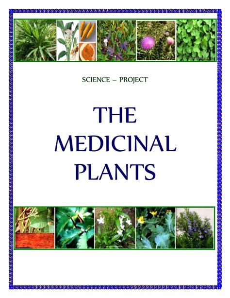 herbal plants and its uses with procedures picture 2