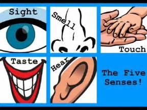 sense sensitive h picture 17