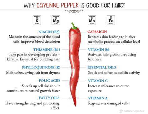cayenne pepper erection size picture 5