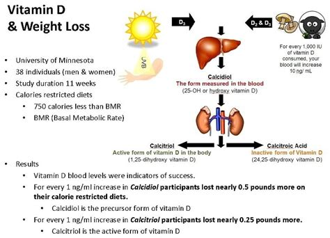 Vitamin d and weight loss picture 1