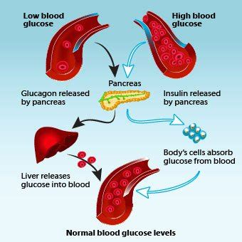 alcoholic with low blood pressure picture 1