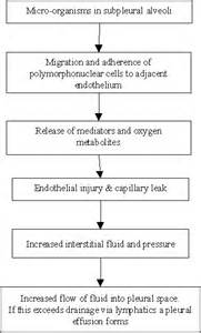 empyema pleural natural treatment picture 3
