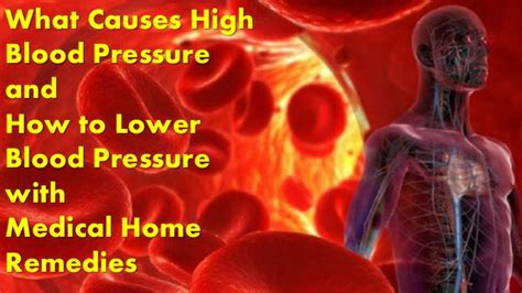 Asian medical cures to high blood pressure picture 14