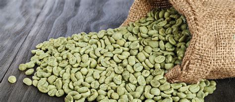 green coffee beans found in the phillipines picture 4