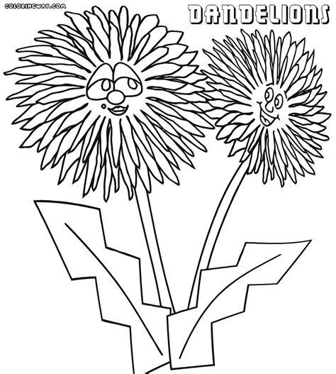 dandelion coloring picture 11