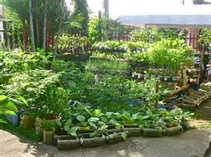 filipino herbs methodology picture 13