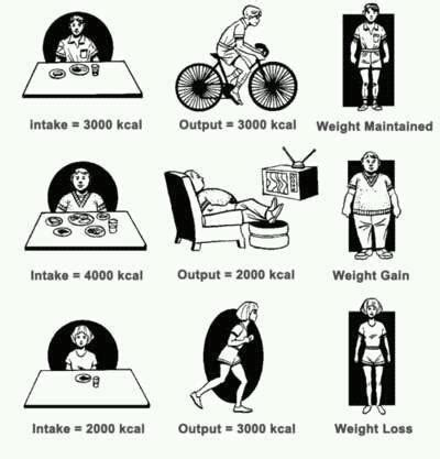 weight loss 1000 calories a day picture 1
