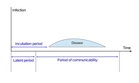 what is the incubation period for the herpes virus picture 11