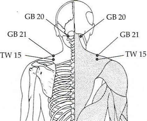 gall bladder pressure picture 7