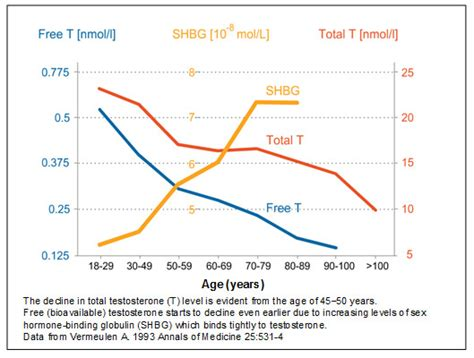 testosterone levels by time of day picture 10