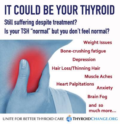 find thyroid doctors in ky pictures of them picture 1
