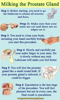 milking the prostate gland pictures picture 1
