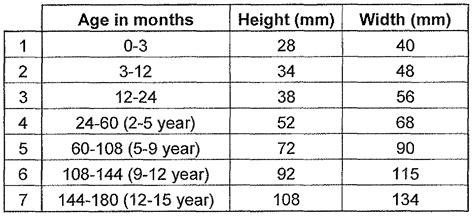 normal penis size chart by age picture 11