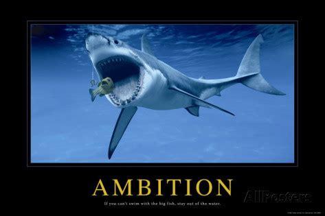 Zaela fools ambition picture 3