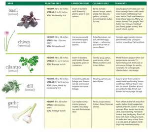 Glossary of herbs and their uses picture 14