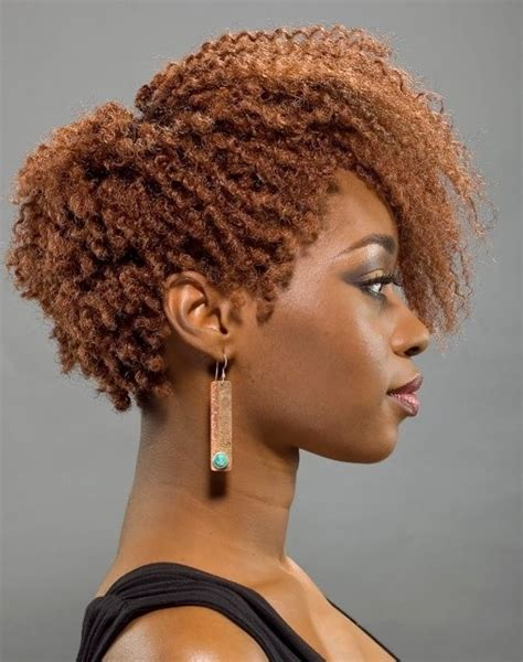 afro hair style picture 11