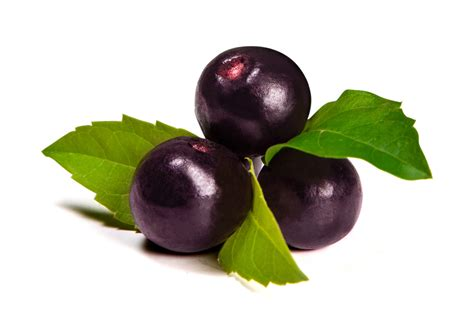 acai berry supplement picture 2