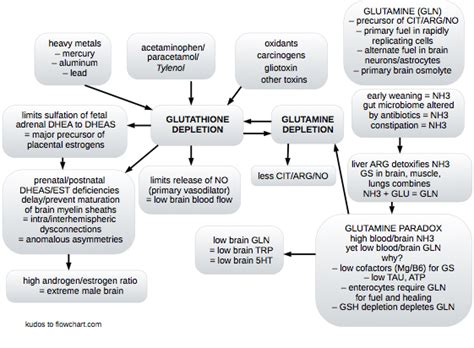 augmentin effect on liver enzymes picture 1