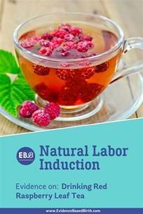 does red raspberry leaf tea induce labor picture 4