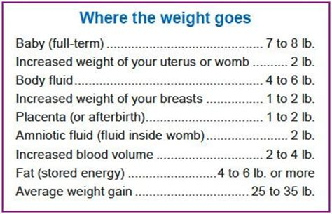 fetus weight gain in 3rd trimester picture 11