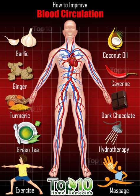herbs for increasing blood flow picture 10