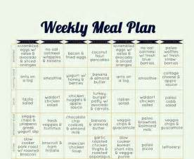 diet plan for beginners picture 11