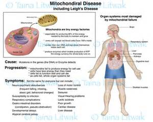 joint diseases picture 5