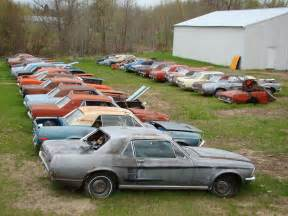 backyard muscle cars picture 7