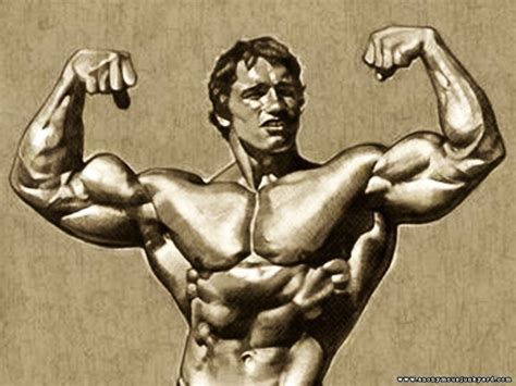 arnolds muscle pictures picture 13