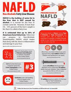 non alcoholic fatty liver picture 3
