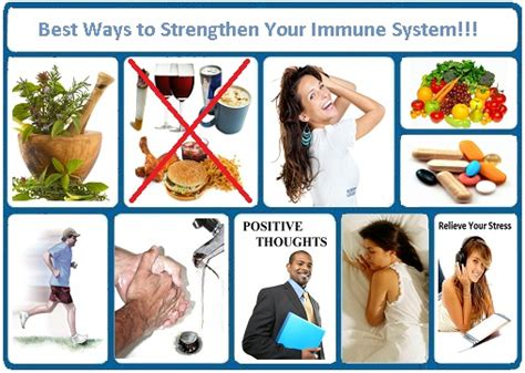 the best herbal product to boost the immune system picture 6