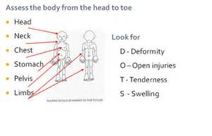 head to toe male physical examination picture 3