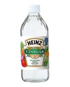 vinegar picture 3