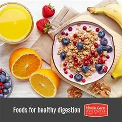 foods for digestion picture 2