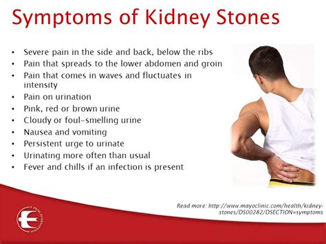 what to take for bladder muscle strain picture 9
