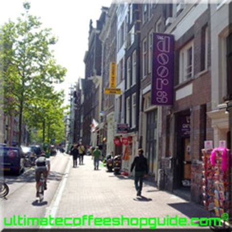 amsterdam doors smoke shop picture 10