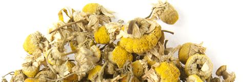 acs herbal tea company picture 1