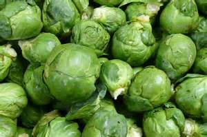 sprouts picture 3