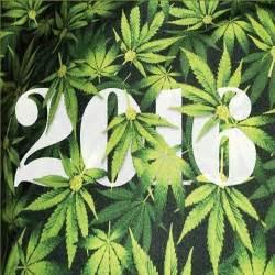 marijuana picture 15