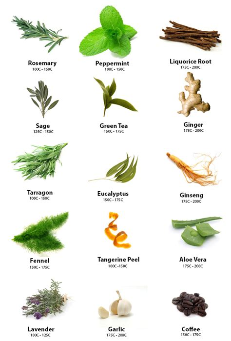 where can i buy puertorican herbs here in picture 10
