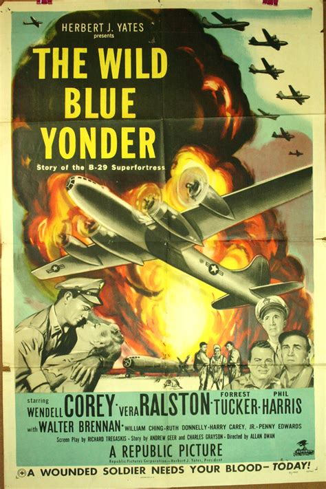 wild blue yonder picture 6