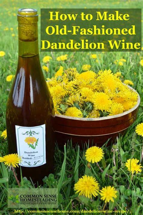 dandelion recipes picture 4