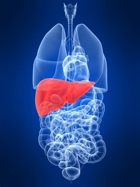 colon cleanses picture 7